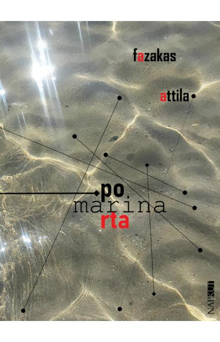 Fazakas Attila: Porta Marina